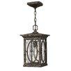Hinkley Lighting Randolph 1 Light Outdoor Hanging Lantern