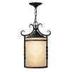 Hinkley Lighting Casa 1 Light Outdoor Hanging Lantern