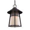 Sea Gull Lighting Hamilton Heights 1 Light Outdoor Hanging Lantern