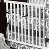 Bacati Damask Crib Fitted Sheet