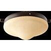 Quorum 1 Light Ceiling Fan Light Kit