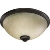 Quorum Alton 3 Light Bowl Ceiling Fan Light Kit