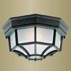 Livex Lighting Outdoor Basics 1 Light Flush Mount