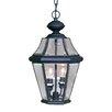 Livex Lighting Georgetown 2 Light Outdoor Hanging Lantern