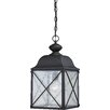 Nuvo Lighting Wingate 1 Light Outdoor Hanging Lantern