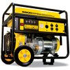 Champion Power Equipment Champion Power Equipment 41135 portable generator
