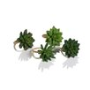 Zodax Desert Cactus Napkin Ring (Set of 12)