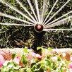 Rainbird Half Circle Spray Pop Up Mini Rotor