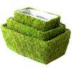 Rectangular Planter Box (Set of 18)