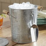 Birch Lane Cawley Ice Bucket with Scoop