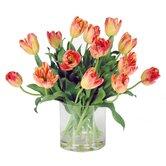 Tulip in Glass