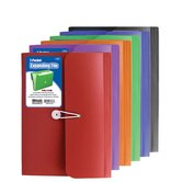 Bazic File Folders