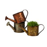 Evergreen Flag & Garden Watering Cans
