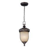Lite Source Outdoor Hanging Lights