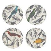 """Ornithology 11"""" Dinner Plate (Set of 4)"""