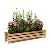 Rectangular Planter Box
