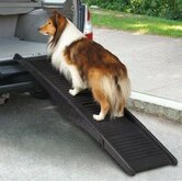 Guardian Gear Pet Ramps & Stairs
