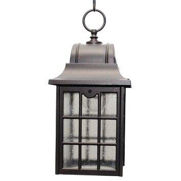 Melissa 600 Series Small 1 Light Outdoor Hanging Lantern Reviews Wayf