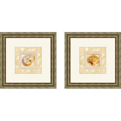 PTM Images Bath Antique Shell 2 Piece Framed Graphic Art Set