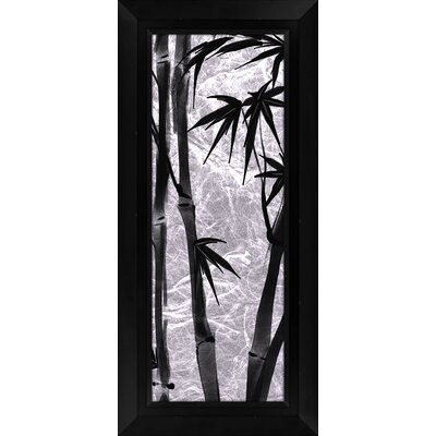 Bamboo II Framed Graphic Art by PTM Images