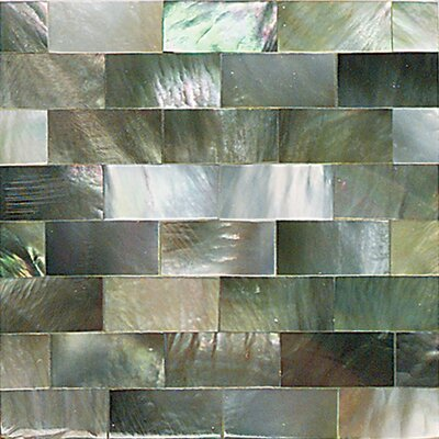 "Daltile Ocean Jewels 2"" x 2"" Running Board Accent Tile in Black Lip"