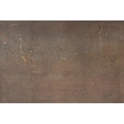 Fusion 16'' x 24'' Metal Field Tile in Bronzed Copper by Daltile
