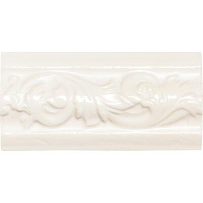 """Daltile Rittenhouse Square 6"""" x 3"""" Classic Decorative Accent in Kohler White"""
