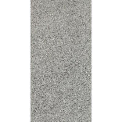 Daltile Magma 12'' x 24'' Porcelain Field Tile in Hammered Ash