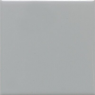 Modern Dimensions 2'' x 4'' Ceramic Mosaic Tile in Desert Gray by Daltile