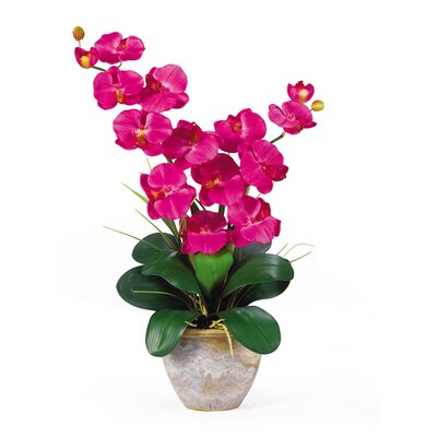 Nearly Natural Double Phalaenopsis Silk Orchid Flowers in Beauty Pink