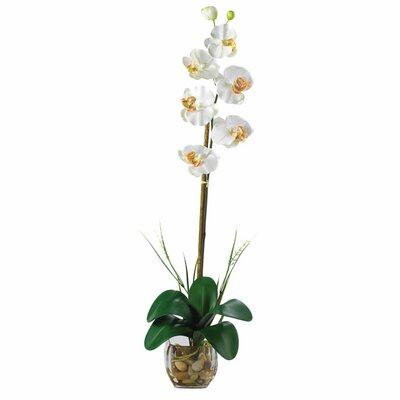 Nearly Natural Liquid Illusion Single Phalaenopsis Silk Orchid Flower in Planter