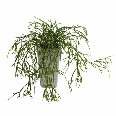 Nearly Natural Nearly Natural Wild Grass Desk Top Plant in Decorative Vase