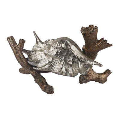 Conch Shell Sculpture On Branch by Sterling Industries