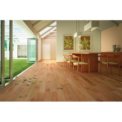 """IndusParquet 3"""" Solid Amendoim Hardwood Flooring in Natural"""