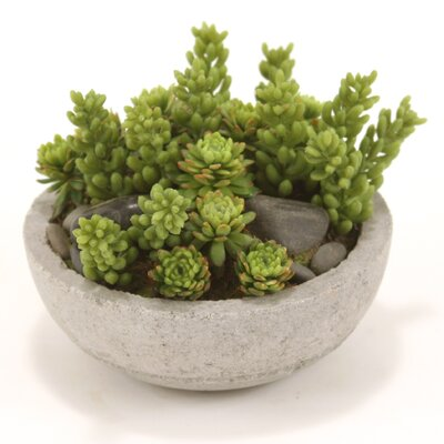 Distinctive Designs Faux Mixed Succulents and Stones Floor Plant in Pot