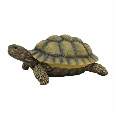 Gilbert the Box Turtle Statue by Design Toscano