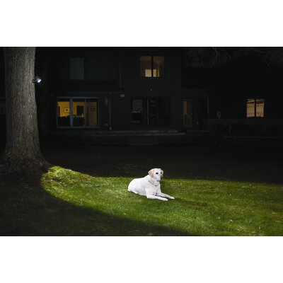 Mr. Beams Mr Beams MB360 Wireless LED Spotlight with Motion Sensor and Photocell - Weatherproof - Battery Operated - 140 Lumens
