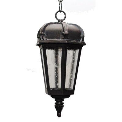 Melissa Lighting Kiss Series 1 Light Outdoor Hanging Lantern