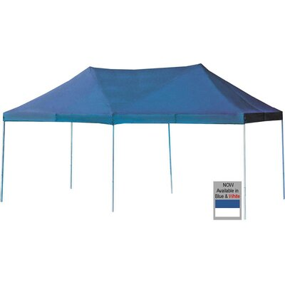 The Party 20 Ft. W x 10 Ft. D Canopy by GigaTent
