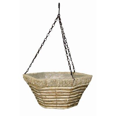 Robert Allen Novelty Hanging Basket