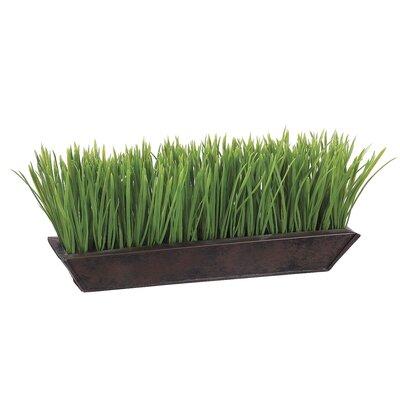Tori Home Grass in Rectangular Planter