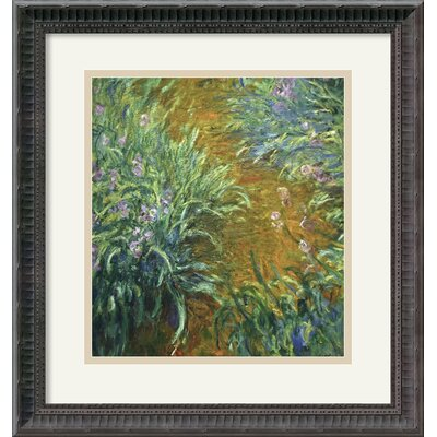 'The Path in the Iris Garden' by Claude Monet Framed Painting Print by Amanti Art ...