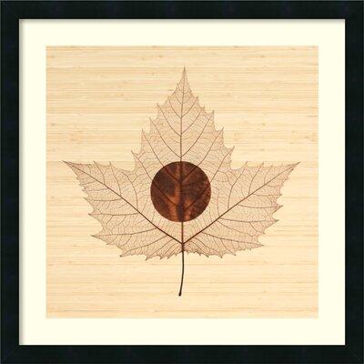 'Yin/Bamboo' by Owen Mortensen Framed Graphic Art by Amanti Art