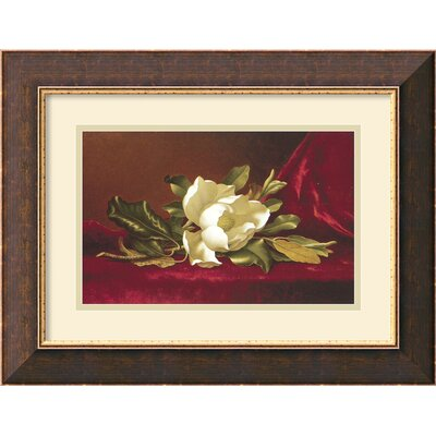 Amanti Art 'The Magnolia Flower' by Min Johnson Heade Framed Painting Print
