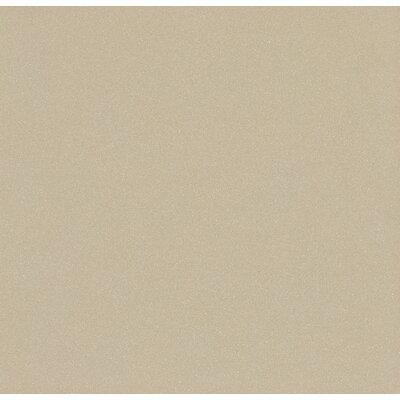 """Emser Tile Direction 24"""" x 24"""" Porcelain Field Tile in Proportion"""