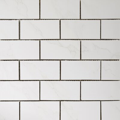 Paladino Albnla Porcelain Mosaic Tile in White Product Photo