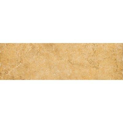 """Emser Tile Genoa 13"""" x 3"""" Surface Bullnose Tile Trim in Luca"""