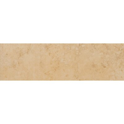 "Emser Tile Odyssey 13"" x 3"" Surface Bullnose Tile Trim in Oro"