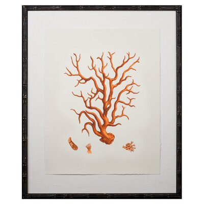 Tangerine Coral Giclee III Framed Graphic Art by Mirror Image Home