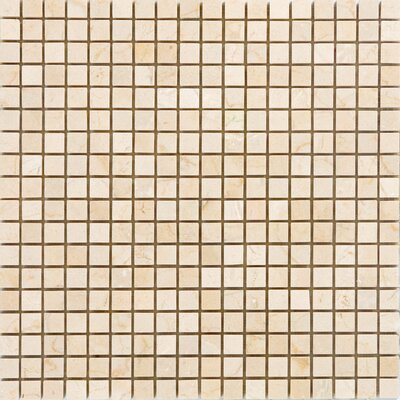 "Epoch Architectural Surfaces 0.63"" x 0.63"" Marble Mosaic Tile in Crema Marfil"